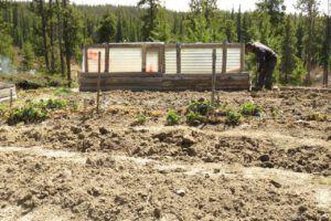 digging garden (Instant Spring!)